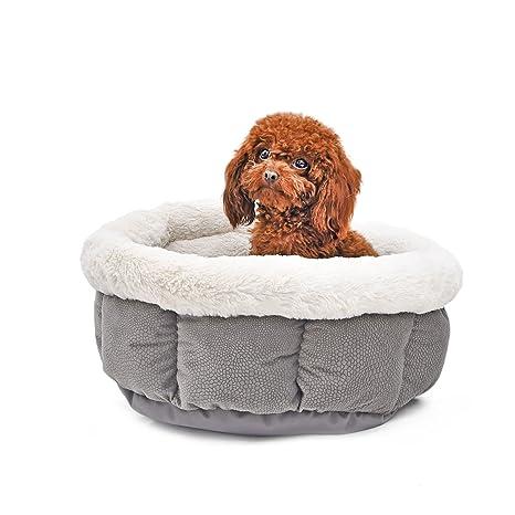 QianHaoQJu Caseta Casa dei Cachorros Suave Cama para Gatos Gatito Nido Cama para Perros de Lusso
