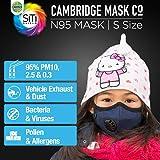 Dettol Anti Pollution Mask Cambridge Basic N95, Navy Blue - Small