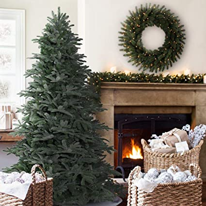 9a2ad860e69 Image Unavailable. Image not available for. Colour  Balsam Hill 5ft Nordmann  Fir Artificial Christmas Tree ...