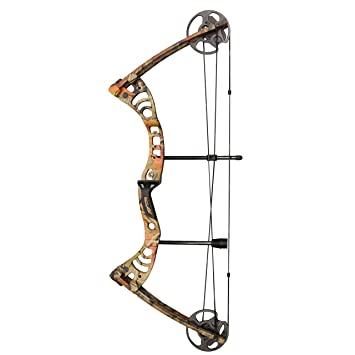 Image result for SAS Scorpii Compound Bow