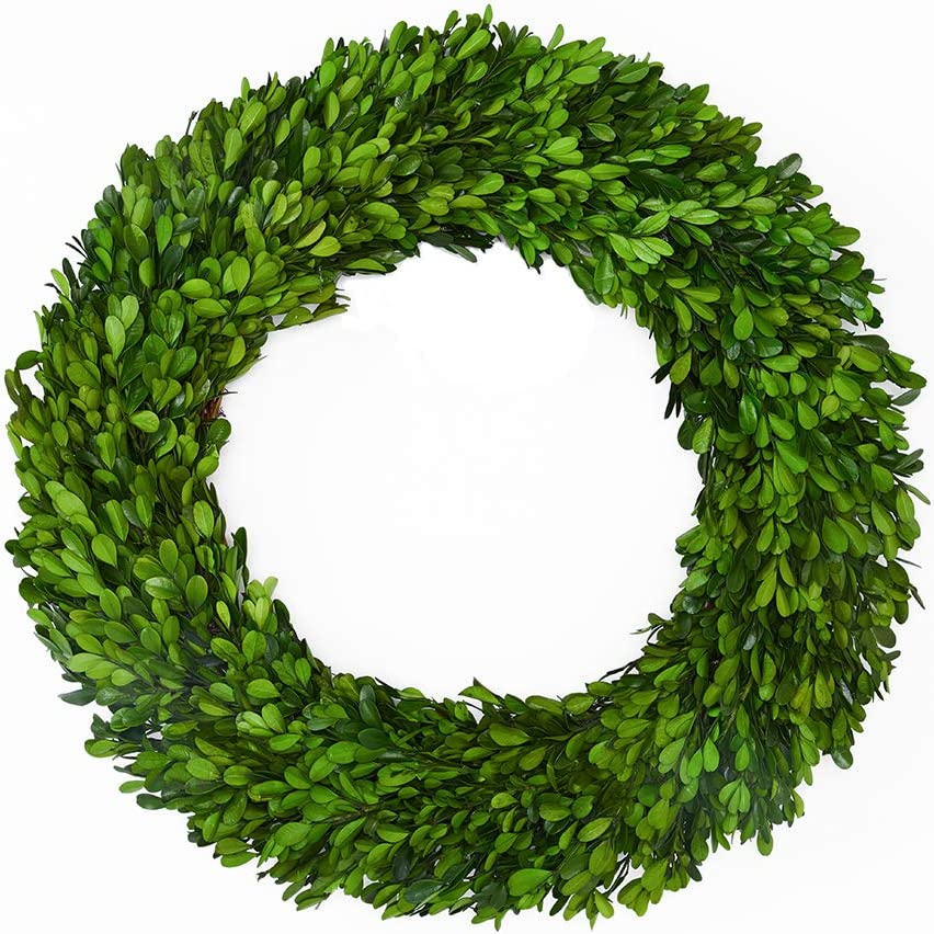 Boxwood Wreath 17 inch Preserved Nature Real Boxwood Wreath Home Decor Stay Fresh for Years Wreath for Halloween and Thanksgiving Home Indoor Decor