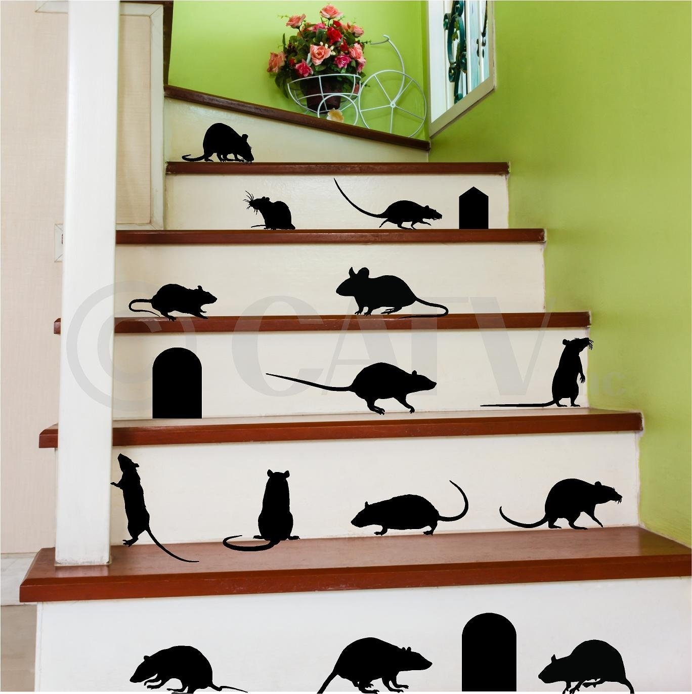 Amazoncom Rats Mice Doors Set of 17 vinyl lettering decal home