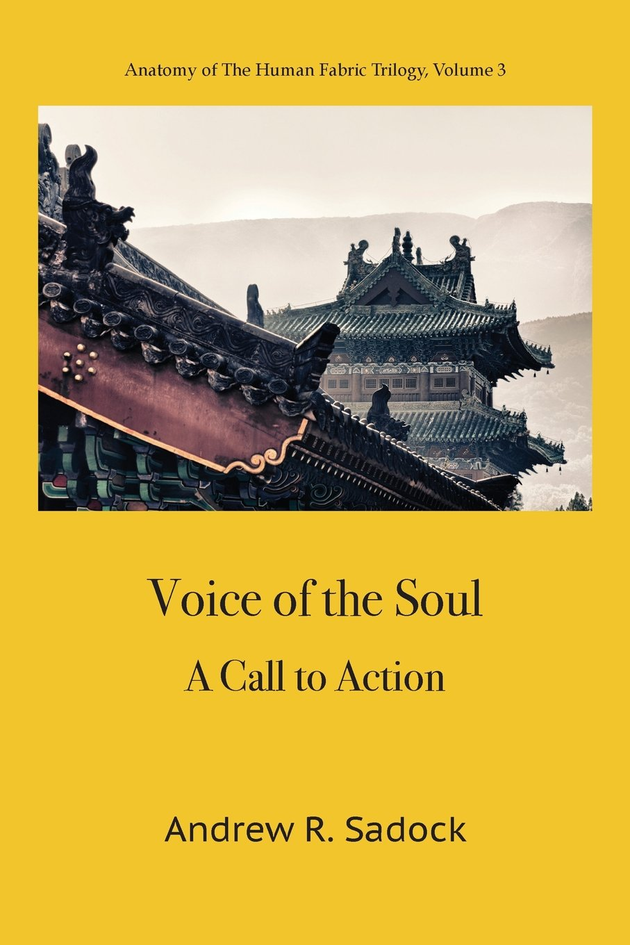 Voice of the Soul: A Call to Action: Andrew R. Sadock: 9781938459412 ...