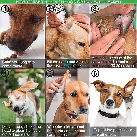 The Healthy Dog Co Limpiador Completamente Natural de Oídos para Perros | 250ml | Ponga Fin al Sufrimiento de Sus Perros en 2-3 Días | Elimina Los ...