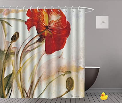 Image Unavailable Not Available For Color SCOCICI European Shower Curtain