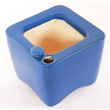Oasis Ceramic Self Watering Planter Blue Amazon Co Uk Garden