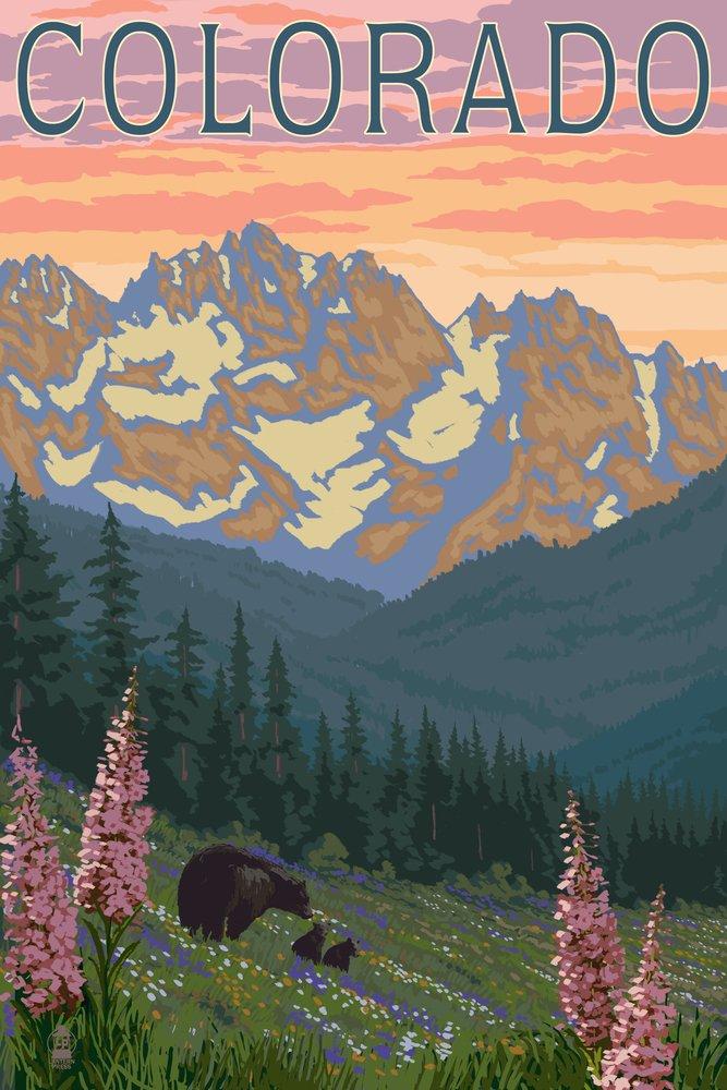 激安本物 コロラド – Bears 24 And Print Spring Flowers Canvas Tote Bears Bag LANT-46805-TT B00N5CB6OO 24 x 36 Giclee Print 24 x 36 Giclee Print, カシワシ:1f2e2e4b --- arianechie.dominiotemporario.com