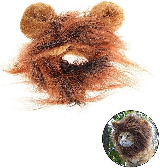 Disfraz para gato melena de León peluca con Scratch: Amazon.es: Productos para mascotas