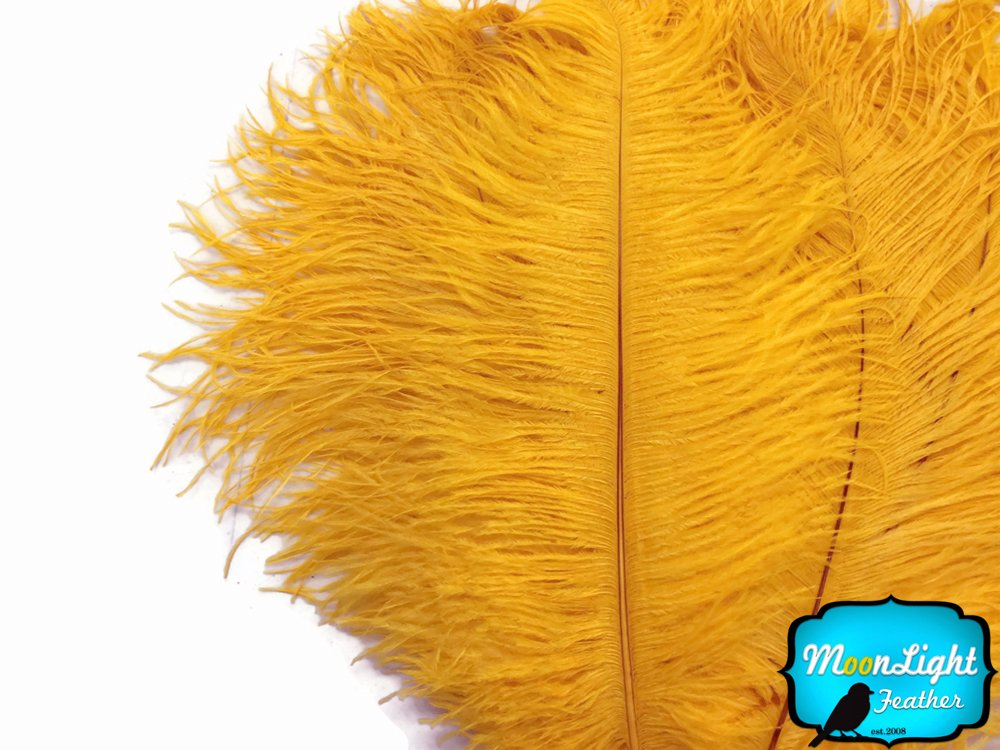 Ostrich Feathers , 1/2 lb 17-19'' Gold Large Ostrich Drab Feathers Wholesale