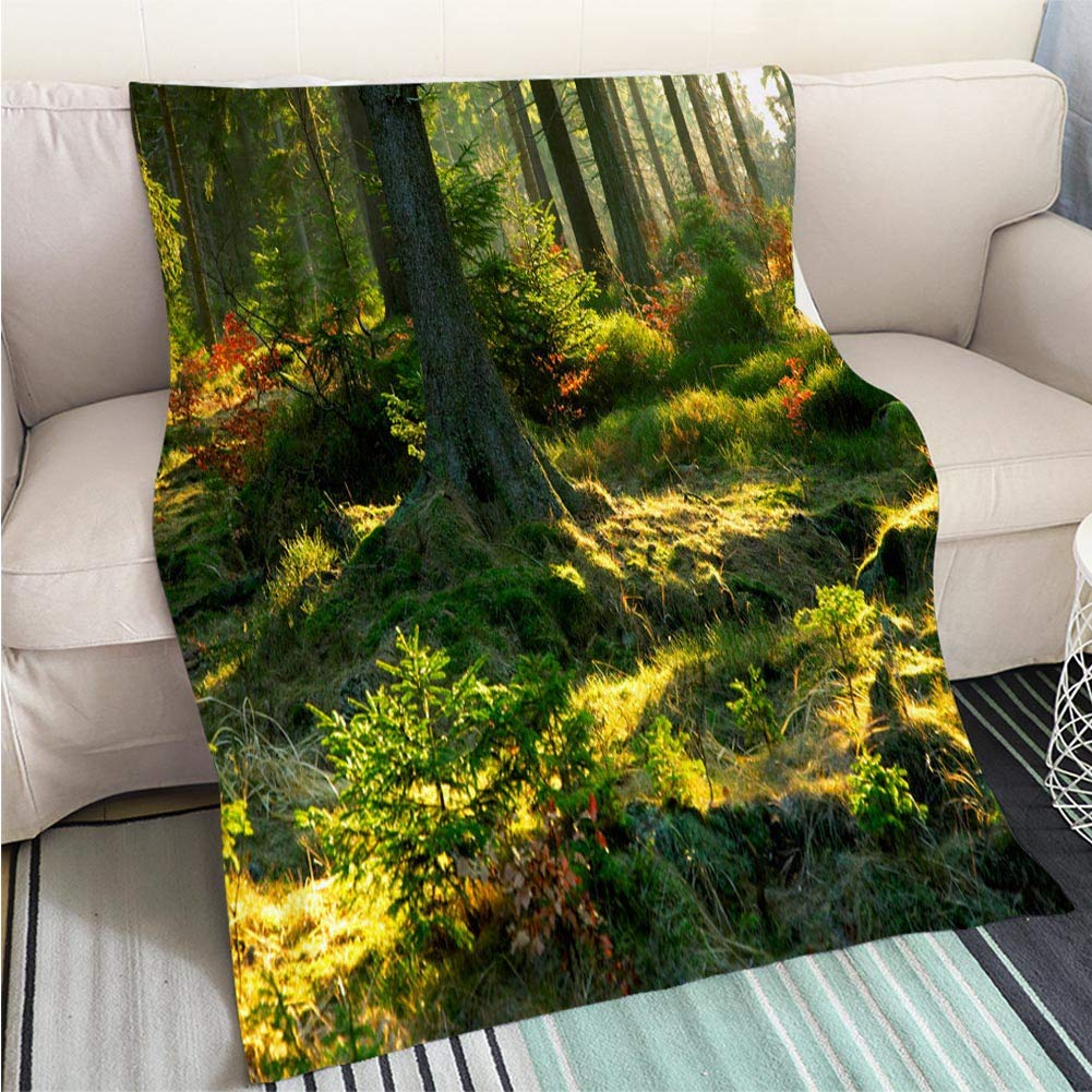 color16 31 x 47in BEICICI Comforter Multicolor Bed or Couch Magical Foggy Landscape at Dawn Aerial View Sofa Bed or Bed 3D Printing Cool Quilt