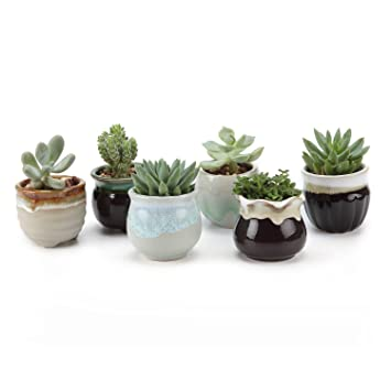 T4U 2 5 Inch Ceramic Succulent Pot,Cactus Planter Pot Plant Container  Flower Pot Flowing Glaze Black&White Serial for Christmas Gift Pack of 6