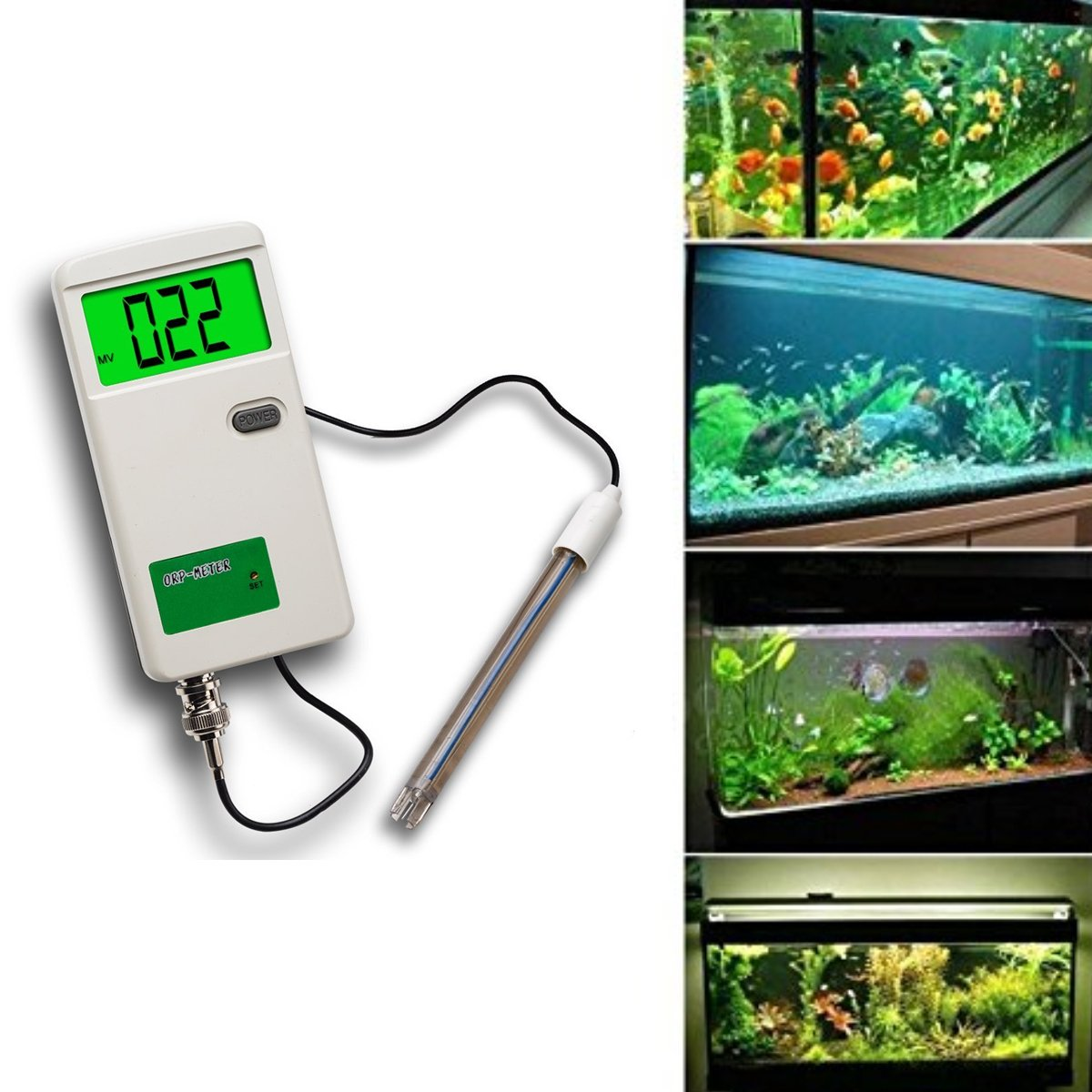 PH Monitor Meter Digital - QIYAT Portable Backlight LCD Display ph Tester Water Quality with Replaceable BNC Adapter for Aquarium, Wine Urine, Hydroponic 0C-50C Monitor (pH-3012)