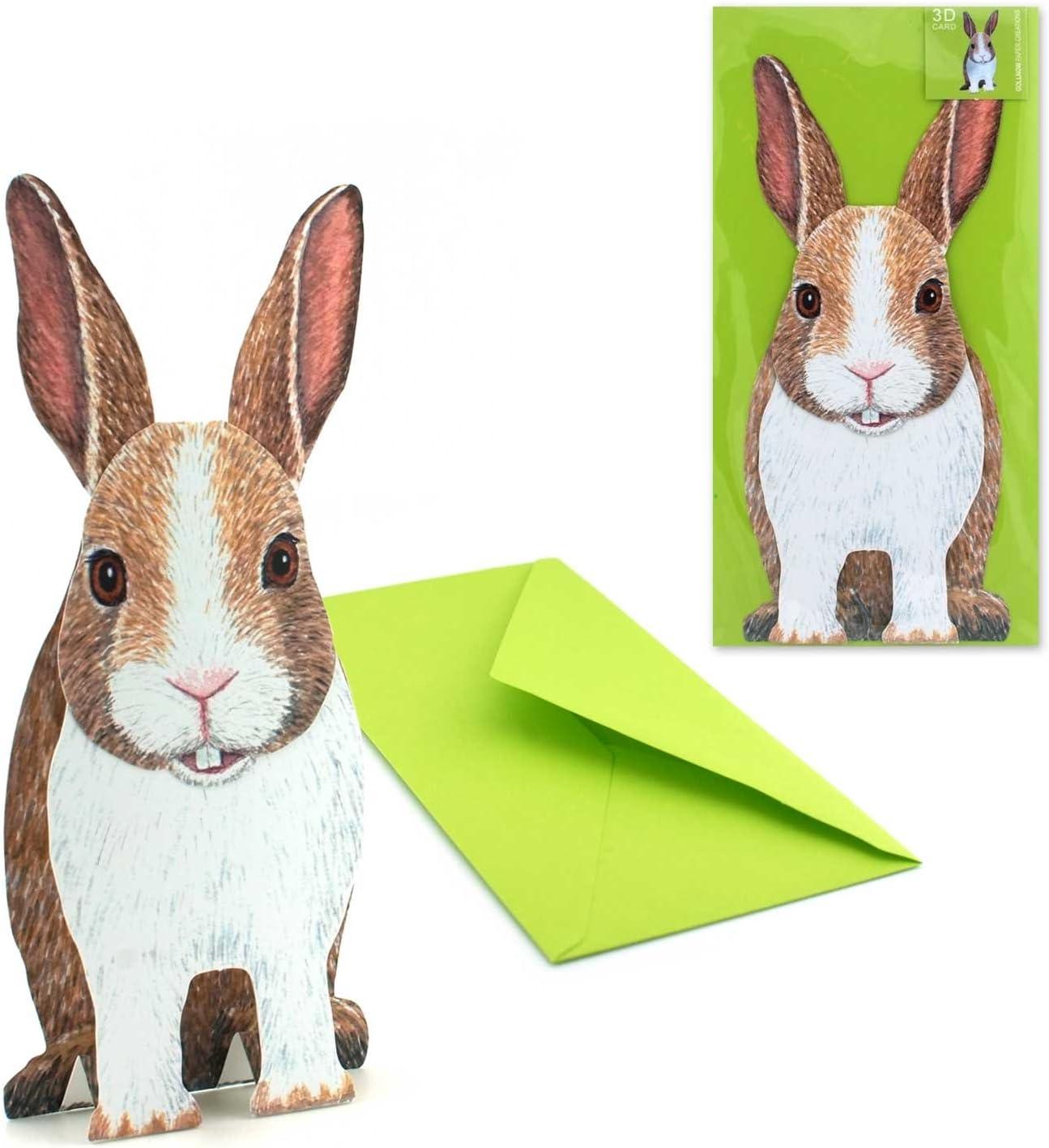Ars-Bavaria Conejo/: Real de Pop Up de tarjeta/3 D Tarjeta de ...