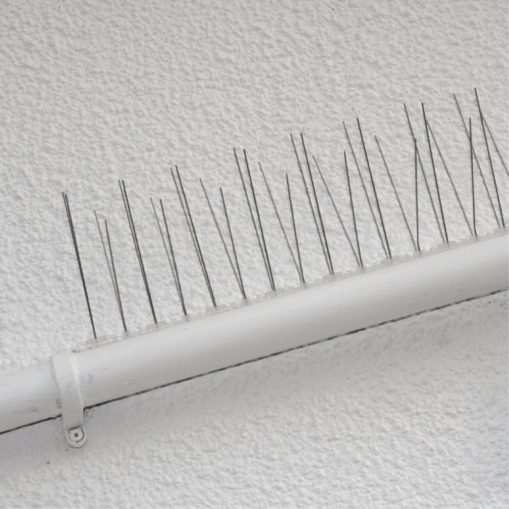 Pest-Stop PSPBS10 Professional Bird Spikes - 10 Pack - 5 metres ...