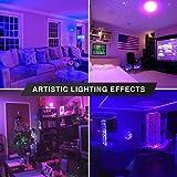 2 Pack BlueX CFL UV Blacklight Bulb 24W