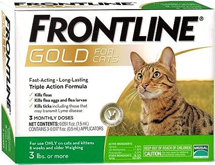 Amazon.com: Frontline Oro para gatos (3 Mes): Mascotas