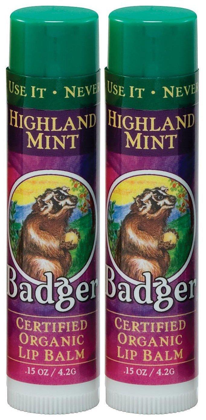 Badger - Lip Balm Stick Highland Mint - 0.15 oz. (pack of 4) Aloe Vesta Cleansing Foam 1 Count, Bluish/Green, 4 oz 2 Pack
