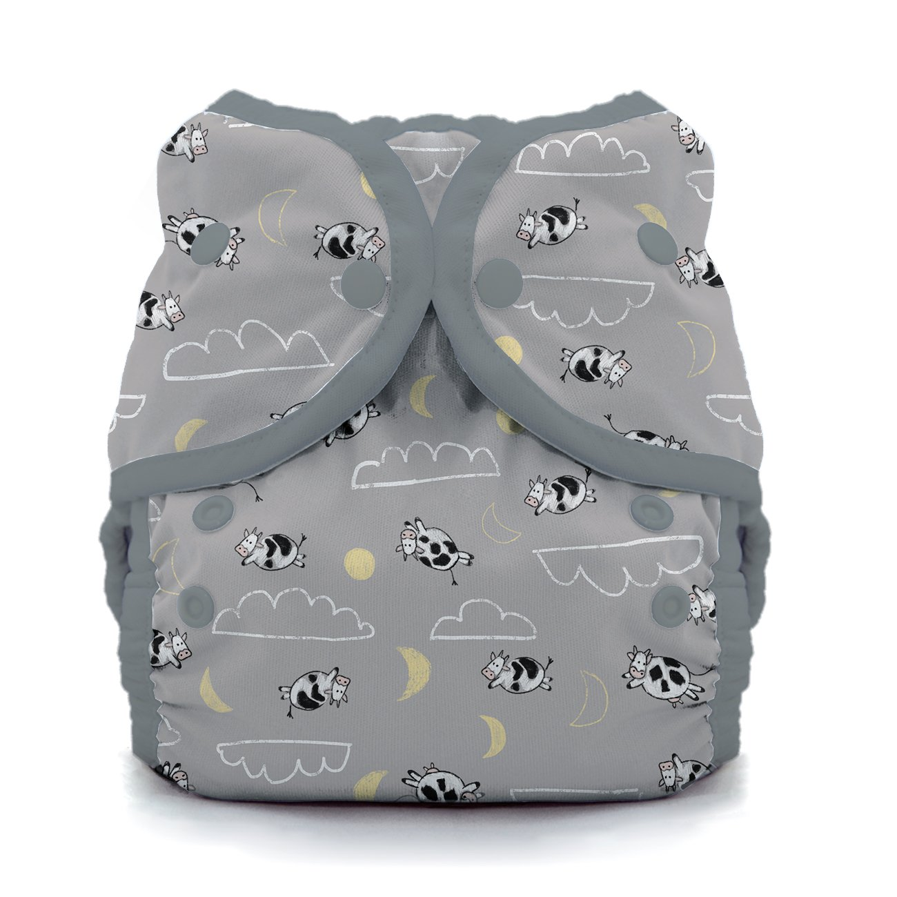 6-18-pound Thirsties TDWPSSD1 Package Snap Duo Wrap Sweet Dreams Collection Size One Diapers