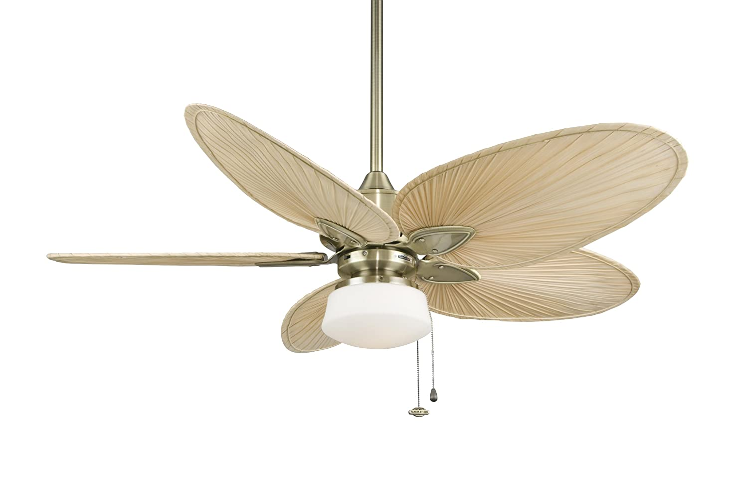 fanimation windpointe 22 inch antique brass with natural palm narrow oval blades with pullchain fp7500ab fanimation ceiling fan with lights