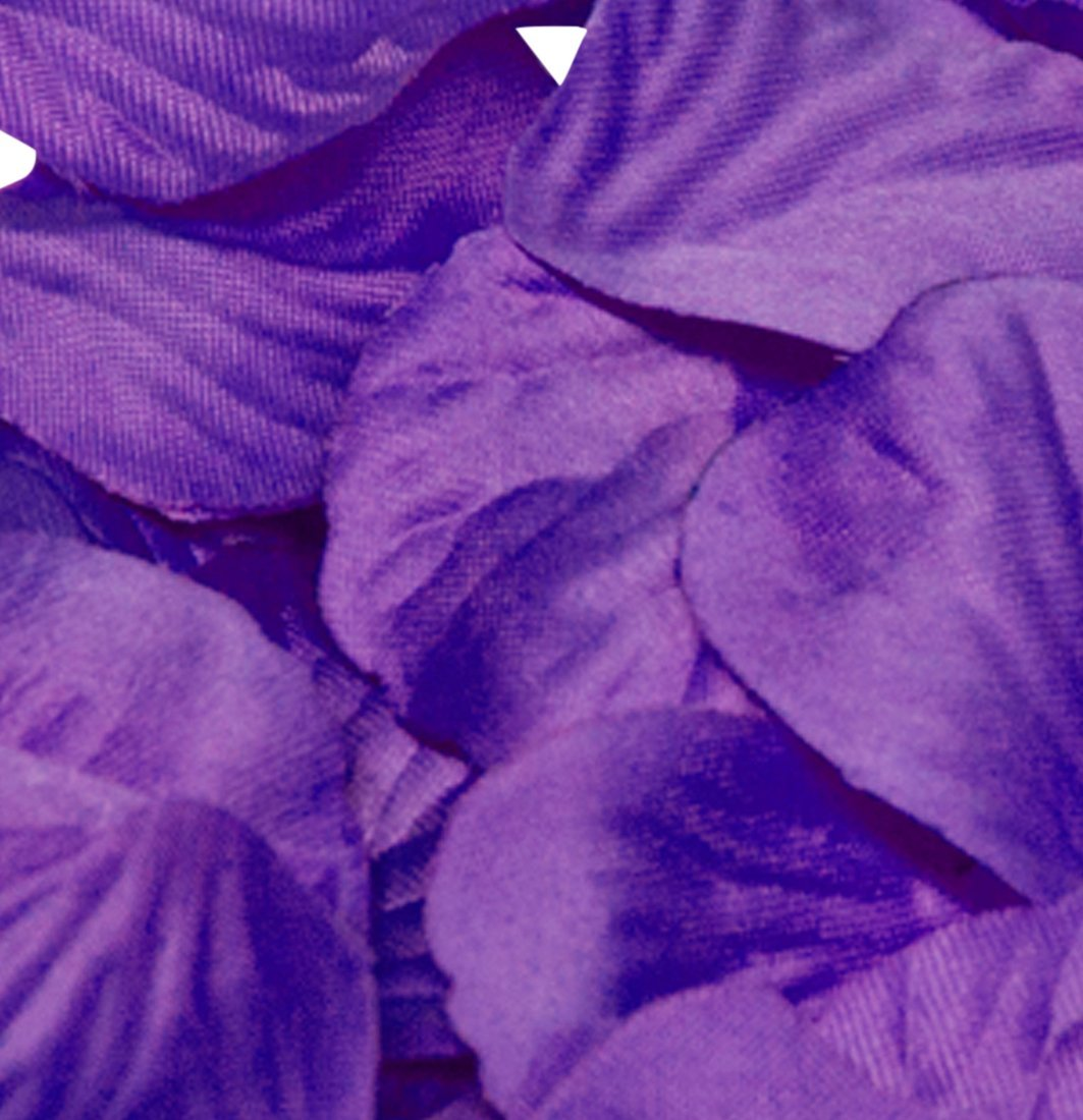 Purple Rose Petals Fabric Confetti Bulk Bag Of 1000 Petals