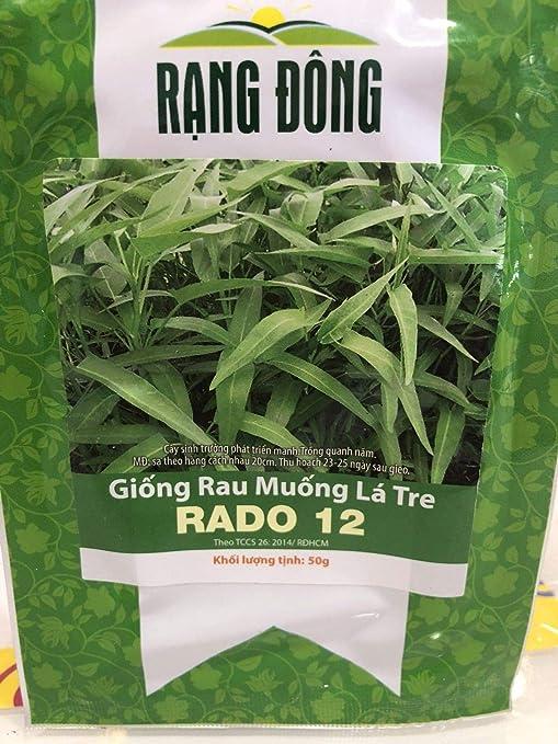 Amazon.com: Shoppy Star Germination Seeds: Hat Giong Rau ...