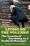Living on the Volcano: The Secrets of Surviving as a Football Manager