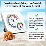 SunGrow Hermit Crab Humidity and Temperature Meter, 3x1 Inch, Analog Gauge for Accurate Readings, Measures in Fahrenheit and Percent, Dual Thermometer and Hygrometer for Terrariums
