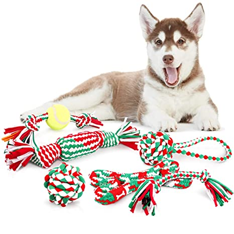 d044a158f06125 Pecute Giochi per Cani 6 Pezzi per Divertimento e Addestramento Giocattoli  della Corda per Pulire Denti