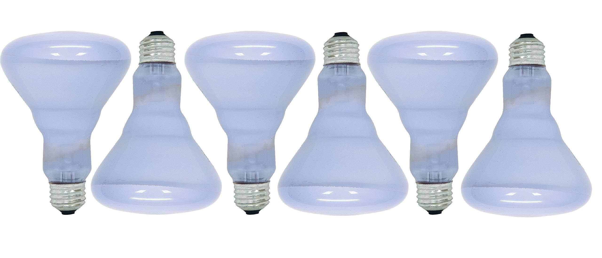 GE Lighting Reveal 65-watt 445-Lumen BR30 Flood Light Bulbs (6 Bulbs)