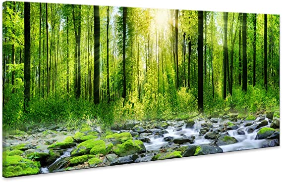 Canvas Art Decor Morning Sunrise Green Trees Landscape Sunshine Over Forest Photograph Printed On Canvas For Home Wall Decoration Wall Art For Living Room Mural Print Artwork Natural Outdoor Picture Posters Prints Amazon Com