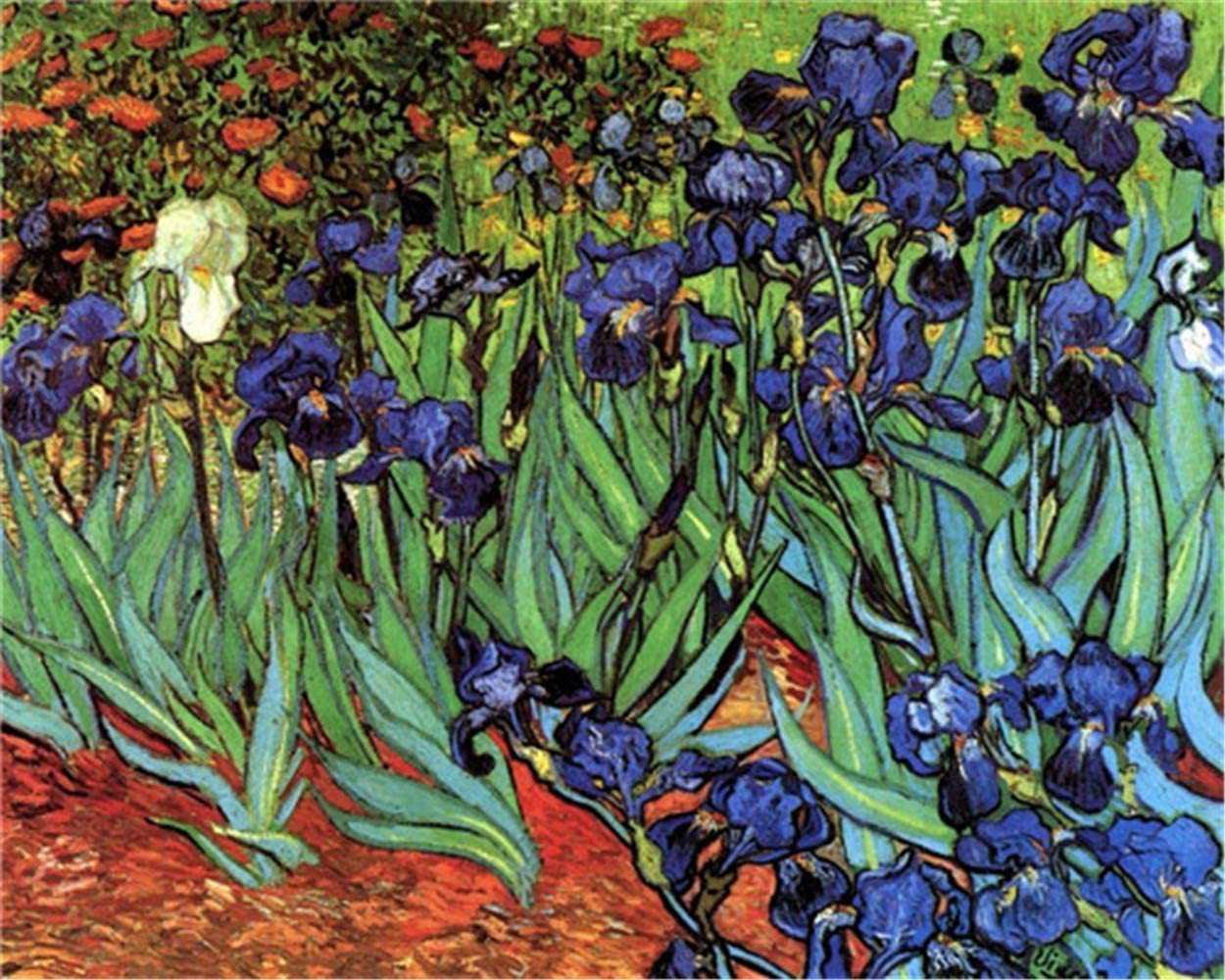 YEESAM ART Paint by Numbers for Adults Kids, Iris Flowers by Van Gogh 16x20 Inch Linen Canvas Acrylic DIY Number Painting Kits Wall Art Decor Gifts (Framed)