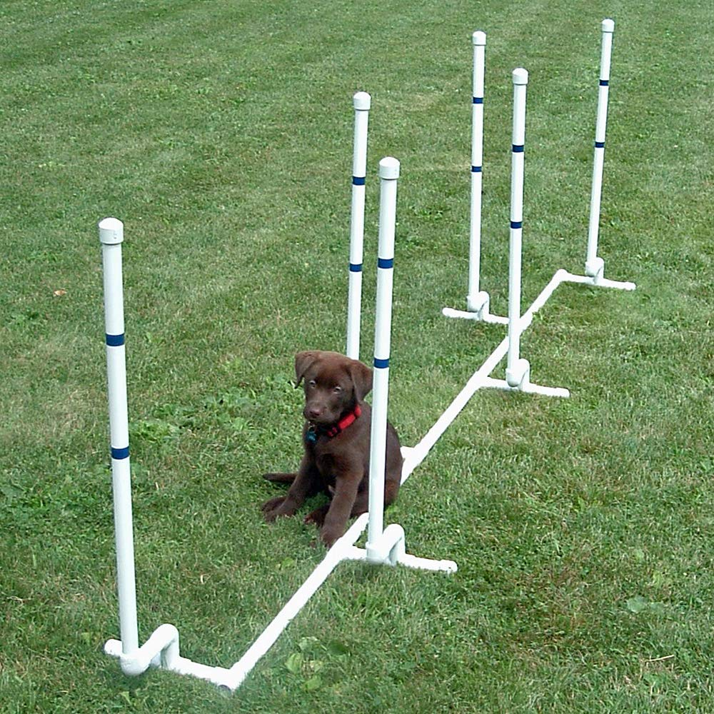 Affordable Agility Channel Weave 6 Pole Set