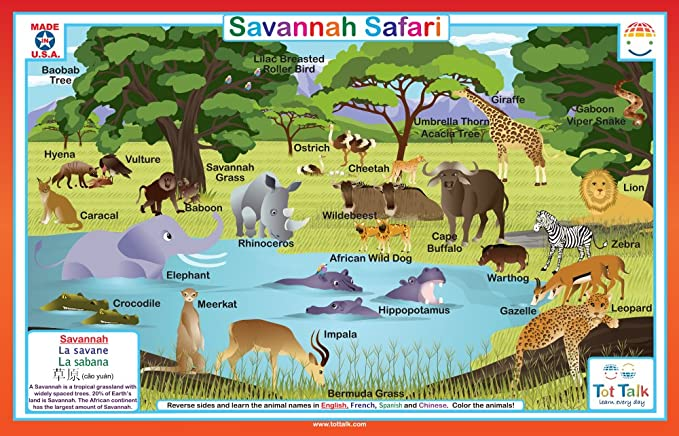 464215438e965 Amazon.com: Tot Talk Savannah Safari Placemat: Toys & Games