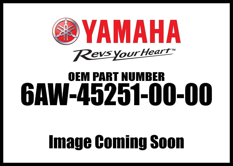 Yamaha Anode 6Aw-45251-00-00 New Oem Yamaha Motor Corp