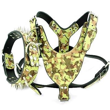 Dogs Kingdom - Collar piel con tachuelas y arnés para perro Boxer ...