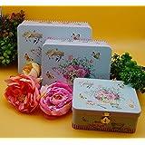 Satyam Kraft Rectangle Shape Metal Printed Flower Love Travel Trunk Box (24.5 cm x 18 cm x 8.5 cm, Blue, Pack of 3)