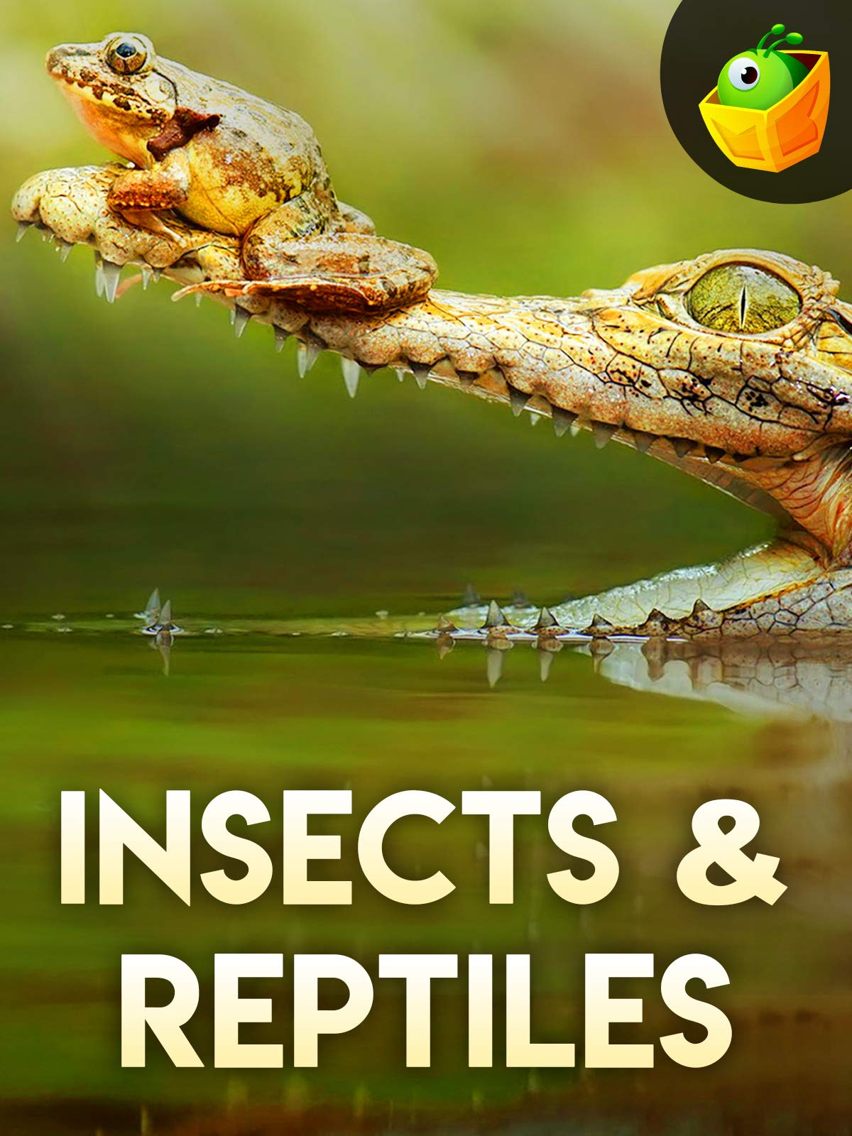 Amazon com: Watch Insects & Reptiles | Prime Video
