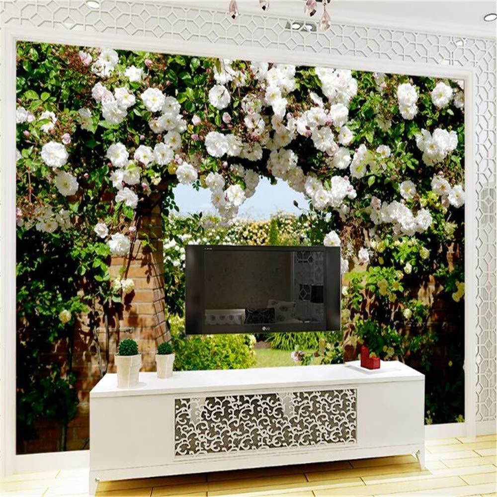 Sala Pasillo Jardín Fondo Ondo Flores La Mural Tv Pantallarose De shdrtQ