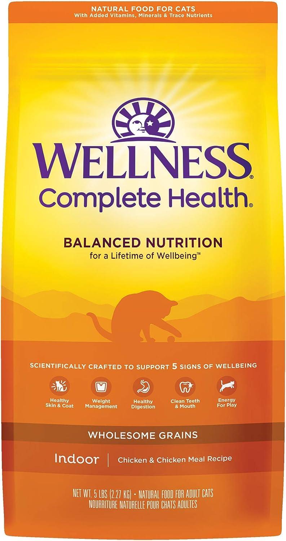 Wellness Natural Pet Food Dry Cat Food