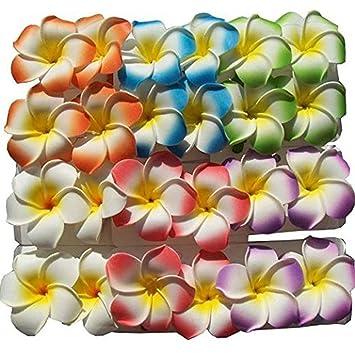 12pcs Colorful 5 cm Haarklemme mit Hawaiianischer Frangipani-Blume ...