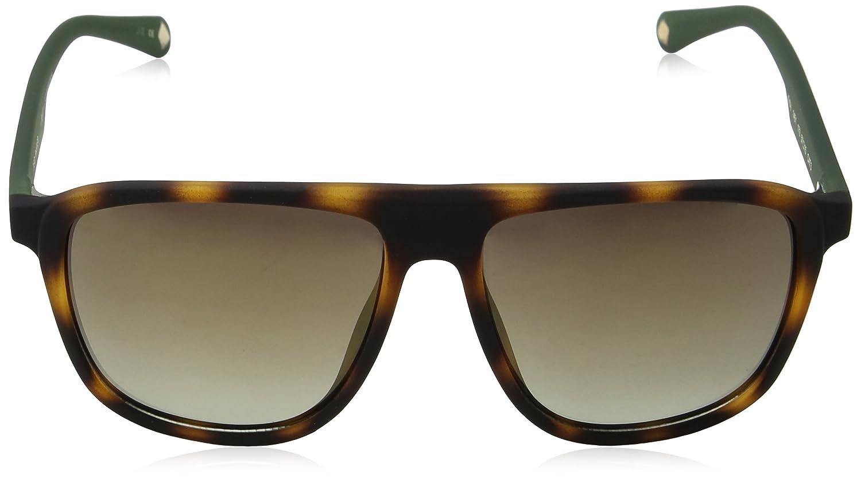 Ted Baker Sunglasses Kirby, Montures de Lunettes Homme, Marron (Dark Tortoiseshell), 57