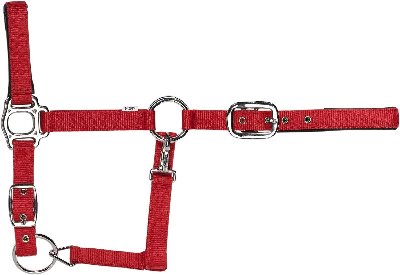 United Sportproducts Germany USG 35816 - Cabezada para Caballos, Color Rojo, Talla Pony