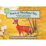 Fawn at Woodland Way - a Smithsonian's Backyard Book