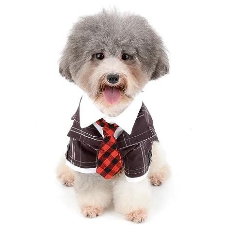 Zunea - Disfraz de Esmoquin para Perro pequeño, para Boda, Novio, Disfraz de