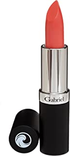 product image for Gabriel Cosmetics Lipsticks,,0.13 Ounce, Lipstick, Natural, Paraben Free, Vegan, Gluten-free,Cruelty-free, Non GMO, High performance and long lasting, Infused with Jojoba Seed Oil. (Sante Fe)