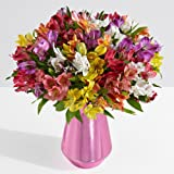ProFlowers - 25 Count Multi-Colored 100 Blooms of Peruvian Lilies w/Free Clear Vase - Flowers