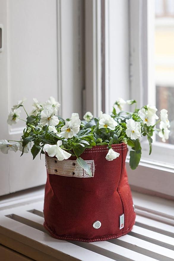 BloemBagz Classic planter 26 litros / 7 galones. Una maceta Textile para sus plantas Color: Curated: Amazon.es: Jardín