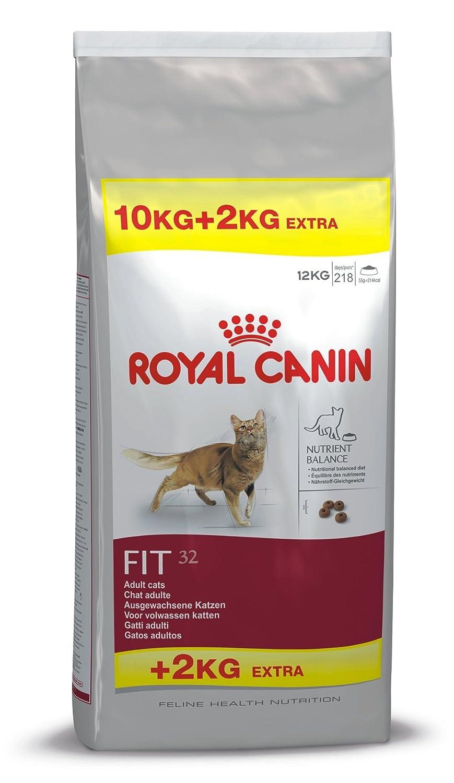 Royal Canin/Fit 32 Sac de 10 Kg croquettes pour chat à l'acivité modéré 03RCF10