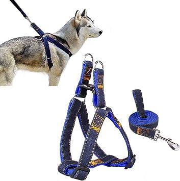 Arnés del animal doméstico, perro lleva Ambielly Jean Correa No ...
