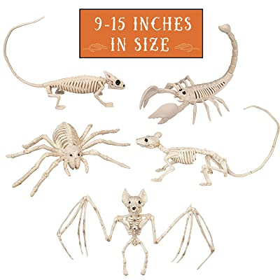 "Halloween Animal Skeletons 5 Pack (9""-15"" Size) w Bendable Tails and Movable Jaws - Weatherproof Yard Decorations Perfect for Indoor/Outdoor Use (Bat, Lizard, Scorpion, Spider, and Rat): Toys & Games"